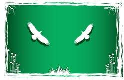 pigeonsin природы искусства Стоковое фото RF