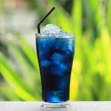 Pigeonwings och blå fruktsaft Royaltyfri Fotografi