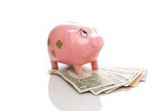 Pigg rosa dei soldi con il dollaro Fotografie Stock Libere da Diritti