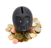 Piggey bank with cions royalty free stock photo
