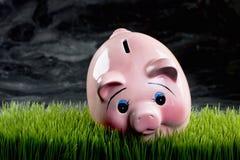 Piggibank cor-de-rosa Fotos de Stock Royalty Free