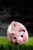 Piggibank cor-de-rosa Imagens de Stock Royalty Free