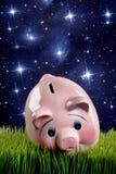 Piggibank rosado Fotografía de archivo libre de regalías