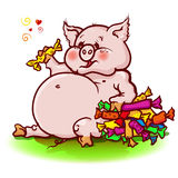 Piggie. Thick pink piggy loves sweets Royalty Free Stock Photos