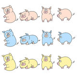 Piggies Stock Image
