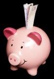 piggy λίβρα είκοσι τραπεζογ&rho Στοκ φωτογραφία με δικαίωμα ελεύθερης χρήσης