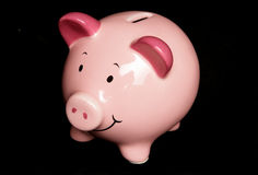 piggy στούντιο πορτρέτου τραπ&ep Στοκ φωτογραφίες με δικαίωμα ελεύθερης χρήσης