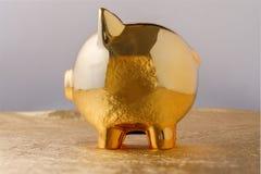 Piggy τράπεζα χοίρων σε μια χρυσή έννοια υποβάθρου για την οικονομική ασφάλεια, την προστασία, την ασφαλείς επένδυση ή τις τραπεζ στοκ εικόνες