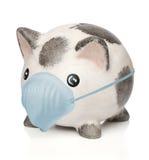 piggy χειρουργικός μασκών τρ&alph Στοκ φωτογραφία με δικαίωμα ελεύθερης χρήσης