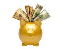 piggy банка золотистое Стоковая Фотография RF