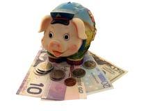 piggy банка смешное Стоковые Изображения RF