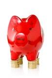 Piggy банк стоя на монетках Стоковая Фотография