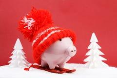 Piggy коробка с красной шляпой при pompom стоя на красной лыже и ручки лыжи на снеге и вокруг snowbound деревья на красной предпо Стоковые Изображения