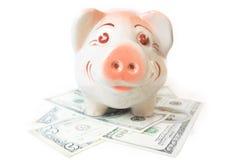 piggy наличных дег банка счастливое Стоковое фото RF