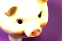 Piggy Foto de Stock Royalty Free