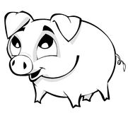 Piggy. Cute little piggy with big eyes Royalty Free Stock Photos