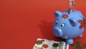 Piggy Fotos de Stock