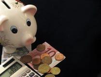 Piggy Foto de Stock