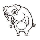 Piggy Lizenzfreie Stockfotos
