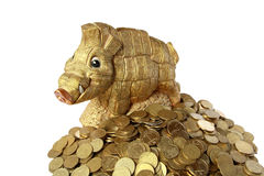 Piggy. Bank - of which the wild boar out a coin Royalty Free Stock Images