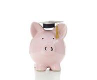 Piggy Absolvent Stockfoto
