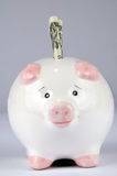 Piggy Bank. With Dollar royalty free stock image
