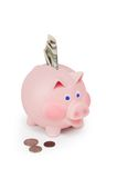 Piggy bank. On white background Royalty Free Stock Photography