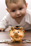 Piggy bank. Young baby boy playing with piggy bank isolated Stock Images