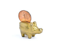 Piggy bank. Model of a piggy bank isolate on white background Stock Image
