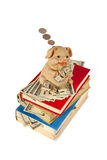 Piggy Bank. With flying money staying on the books Royalty Free Stock Image