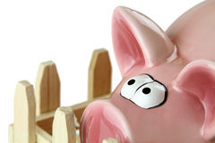 Piggy bank. Pink piggy bank on white background Stock Photography