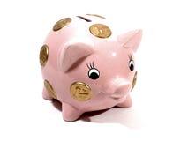 Piggy Bank. Ceramic piggy bank with Euro symbols Stock Photography