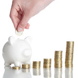 Piggy Bank. A Piggy Bank is standing behind some stack of coins Stock Image