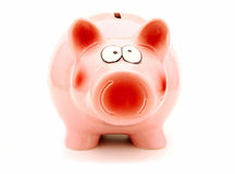Piggy Bank. A single piggy bank, face view, isolated on a white background Royalty Free Stock Image