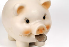 Piggy Bank 2 royalty free stock photos