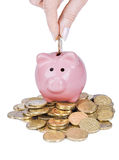 Piggy bank. And hand with coin on white background royalty free stock photo