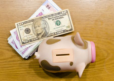 Piggy bank. And Banknote on wood table ,photograph on top view Royalty Free Stock Image
