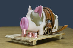 Piggy bank Stock Photos