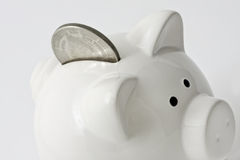 Piggy Bank. Macro close up shot of a white piggy bank on a white background. To keep specular hightlights to a minimum a speedlite reflecting was used to capture Royalty Free Stock Photo