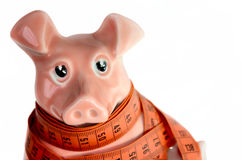 Piggy_Bank. Pink piggy bank on a white background Royalty Free Stock Image
