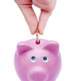 Piggy bank Stock Photography