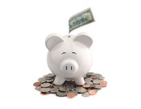 Piggy Bank. Picture of Piggy bank with dollar bills royalty free stock images