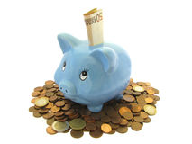 Piggy-bank. Piggy Bank with white background Stock Image
