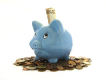 Piggy-bank. Piggy Bank with white background Royalty Free Stock Photos