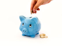 Piggy-bank. Piggy Bank with white background Royalty Free Stock Image