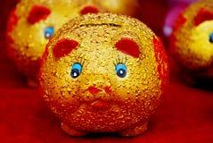 Piggy Bank. Golden pig,having a deposit Stock Photos