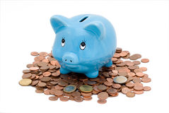Piggy Bank. With white background Royalty Free Stock Images