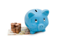 Piggy Bank. With white background Stock Photography
