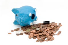 Piggy Bank. With white background Stock Image