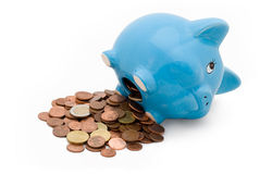Piggy Bank. With white background Royalty Free Stock Photo